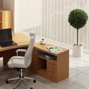 Кабинет директора (комплект) Ньюмен 11